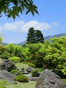 珍しい琳派風の庭