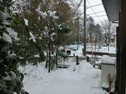 写真不足で雪の風景。でも綺麗でしょう?