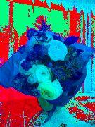 頂いた花をいじってみました。祖母に捧げます。