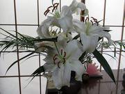 白い百合は祖父が好きな花だった。