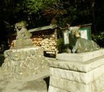 牛と狛犬 谷保神社にて