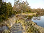 日本庭園の散歩道